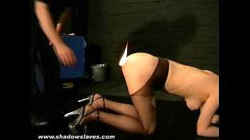 Watch DANI DANIELS having fun., humiliated , tortured and crying for pain